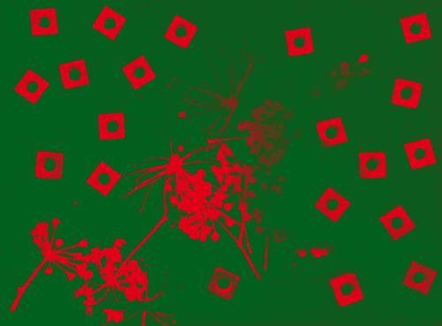 20171020_101727 a INV Grsd Red FBO