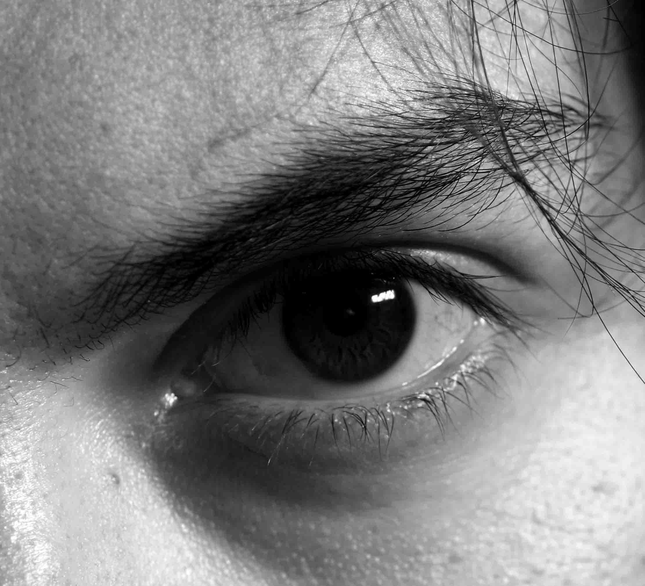 IMGP0138a eye FBo