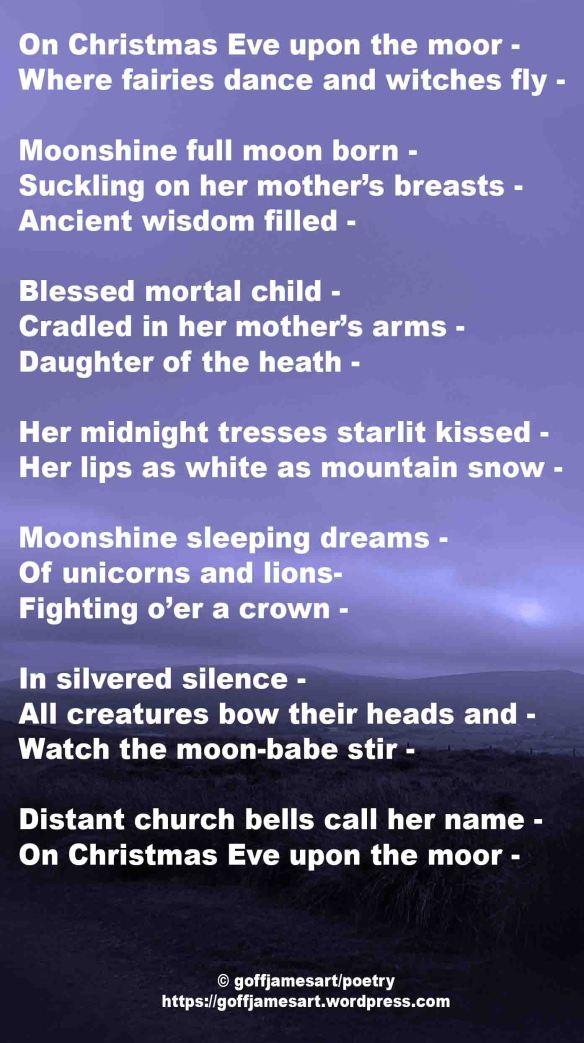 Moonshine FBO