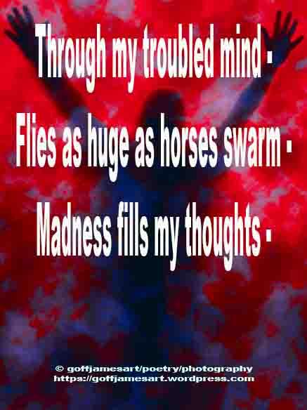 Madness FBO