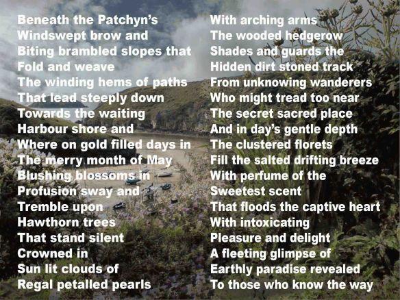The Patchyn FBO
