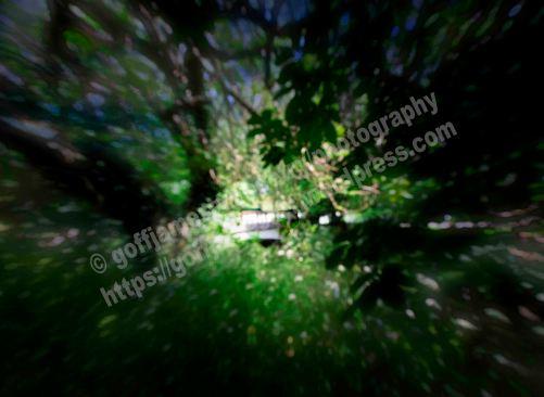 IMGP3801ab3StripDiffOpq64WOWFBO
