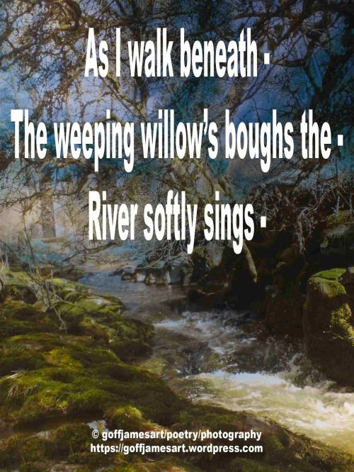 River SongFBO