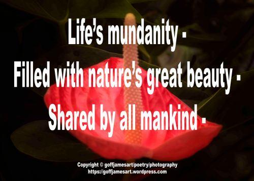 MundanityFBO