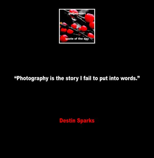 Photography Quotes 3