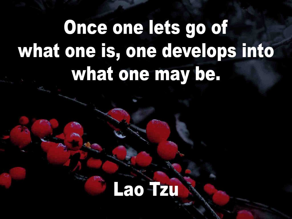 An image made up of a black background with red berries and on which a quotation is written.