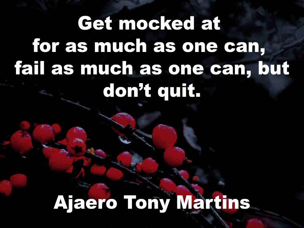 The image shows a spray of red berries on a black background on which a quotation by Ajaero Tony Martins is written.