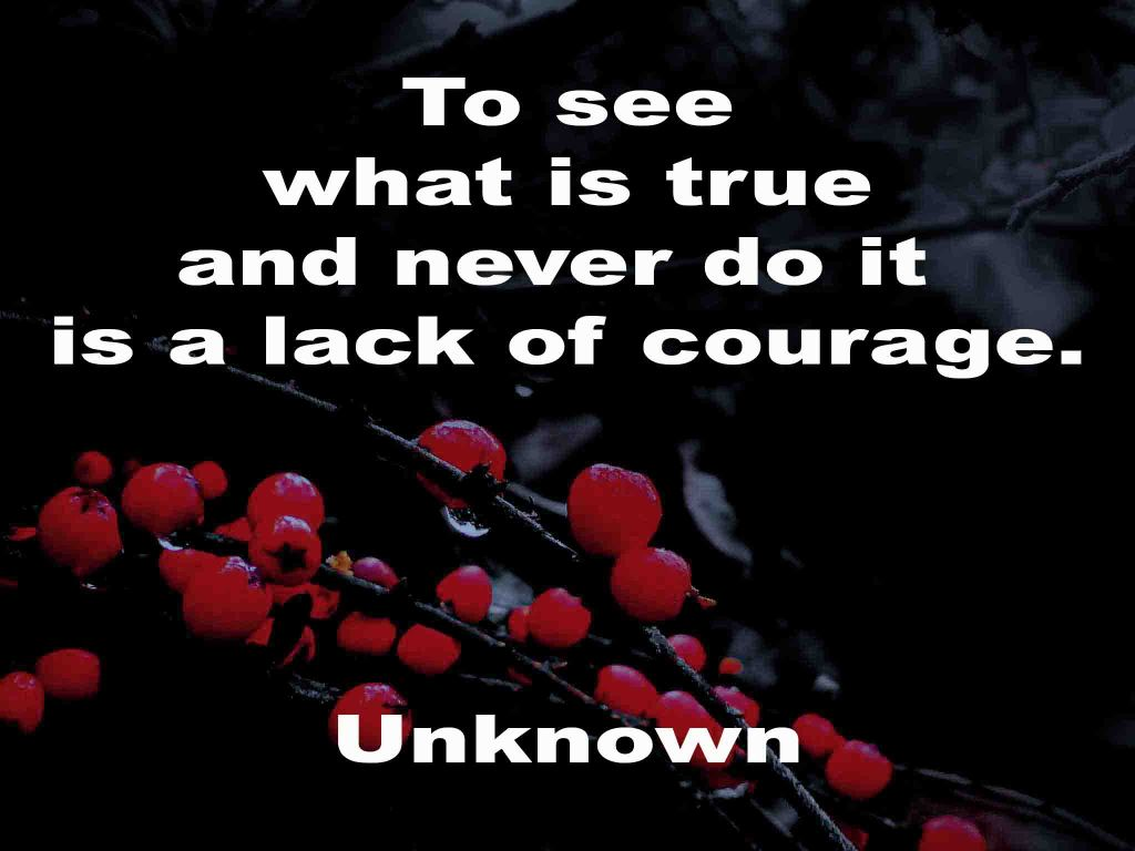 The image shows a spray of red berries on a black background on which a quotation by an unknown writer is written. It speaks of truth and courage.