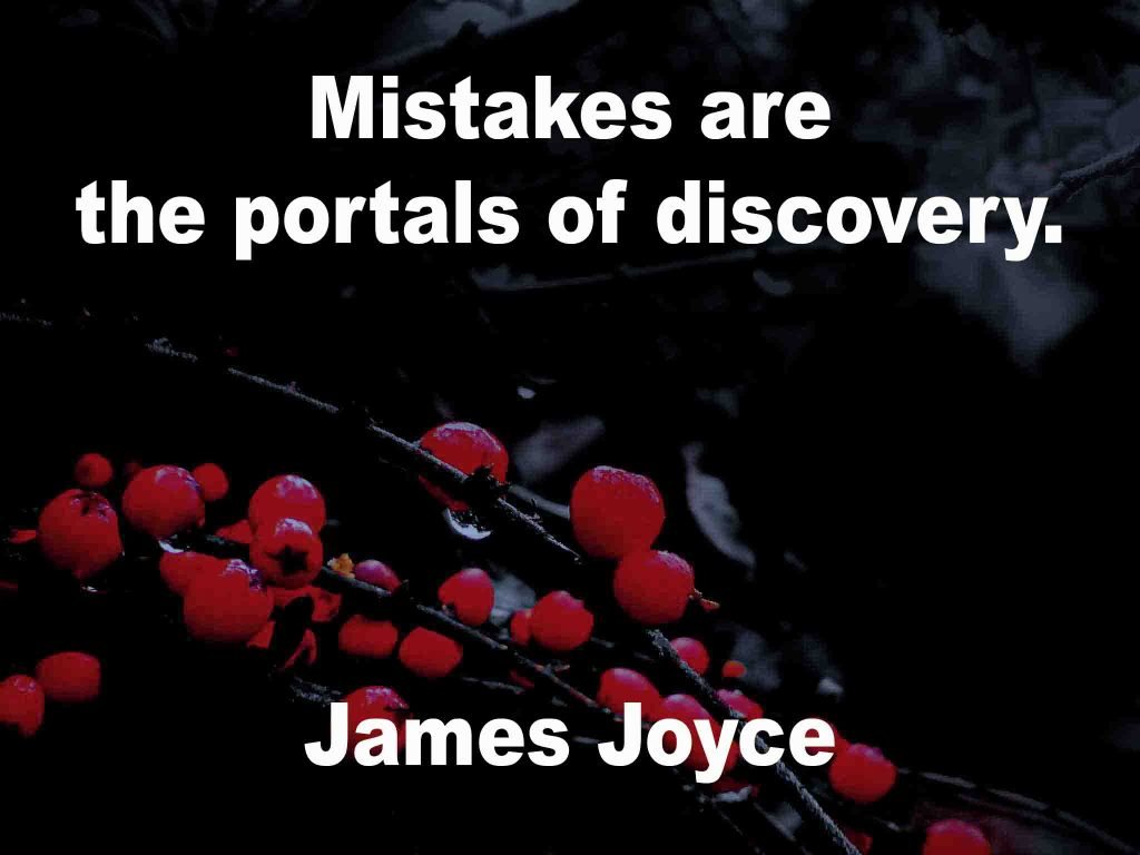 The image shows a spray of red berries on a black background on which a quotation by James Joyce is written. It speaks of mistakes being portals of discovery.