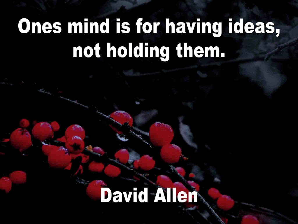The image shows a spray of red berries on a black background on which a quotation by David Allen is written. It speaks of ones mind being for ideas and not holding them.