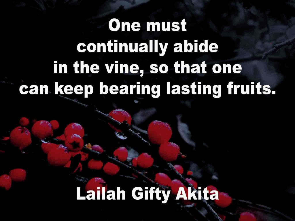 The image shows a spray of red berries on a black background on which a quotation by Lailah Gifty Akita is written. It speaks of having to be continually abiding i the vine so that one can keep bearing lasting fruits.