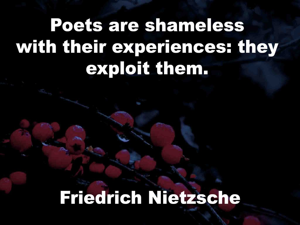 The image shows a spray of red berries on a black background on which a poetry quotation by Friedrich Nietzsche is written. It speaks of poets being shameless with their experiences in the manner in which they exploit them.