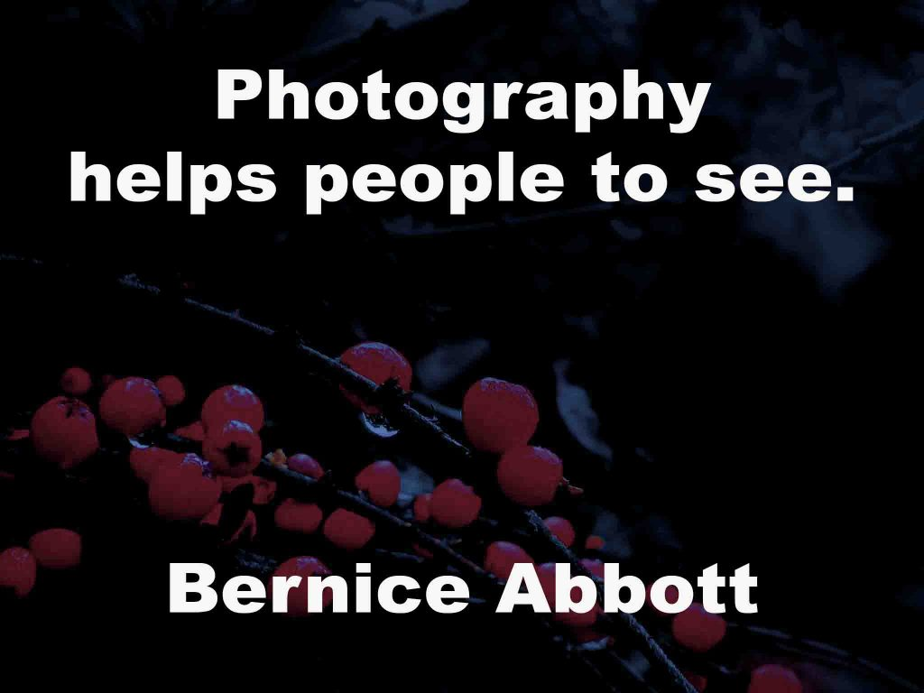 The image shows a spray of red berries on a black background on which a quotation by Bernice Abbott is written. It speaks of how photography helps people see.