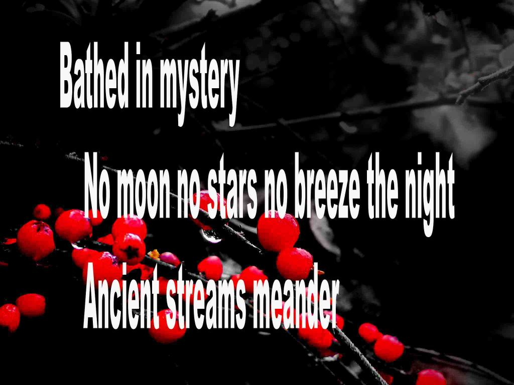 The image shows a spray of red berries on a black background on which a haiku titled Bathed in Mystery is written. The poem speaks of a night being moonless, starless, breezeless, ancient streams and filled with a sense of mystery.