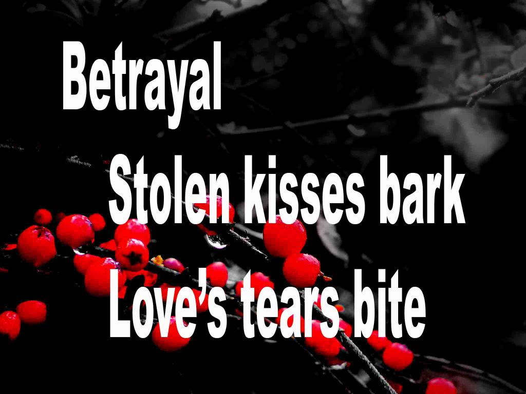 The image shows a spray of red berries on a black background on which a senryū titled Betrayal is written. The poem speaks of betrayal, stolen kisses and love's tears.