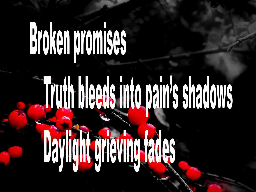 The image shows a spray of red berries on a black background on which a haiku titled Broken Promises is written. The poem speaks of the pain of broken promises.