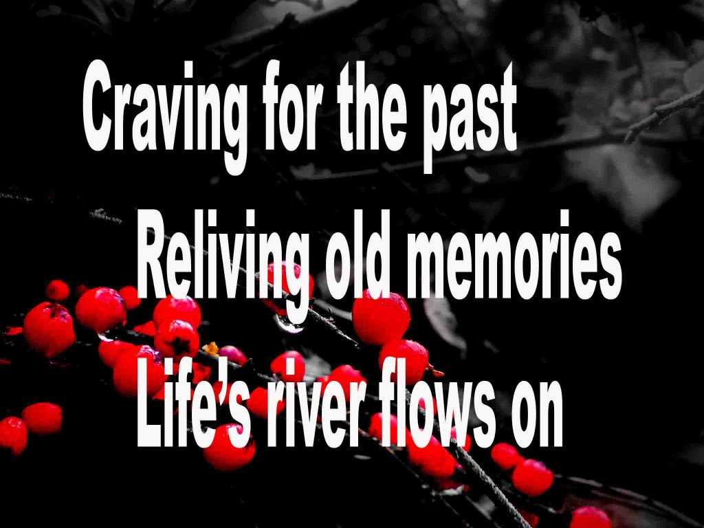 The image shows a spray of red berries on a black background on which a haiku titled Craving for the Past is written. The poem speaks of craving for the past, reliving old memories; but, life like the river ever flows onwards.