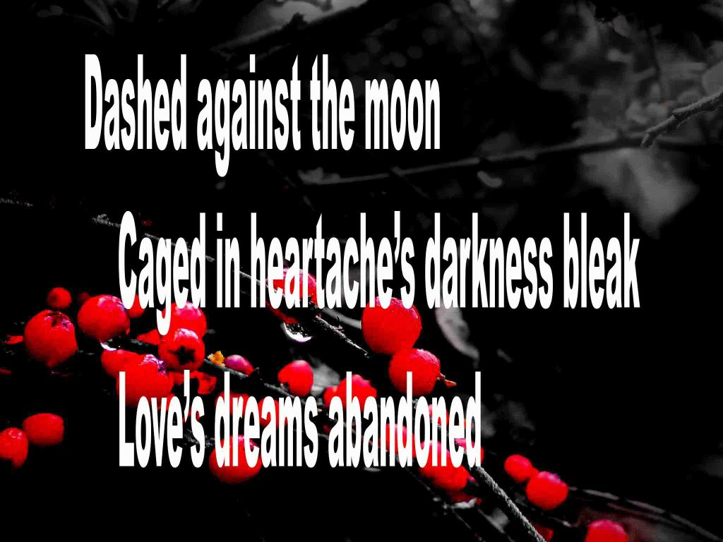 The image shows a spray of red berries on a black background on which a haiku titled Dashed Against the Moon is written. The poem speaks of heartache and love's dreams being abandoned.