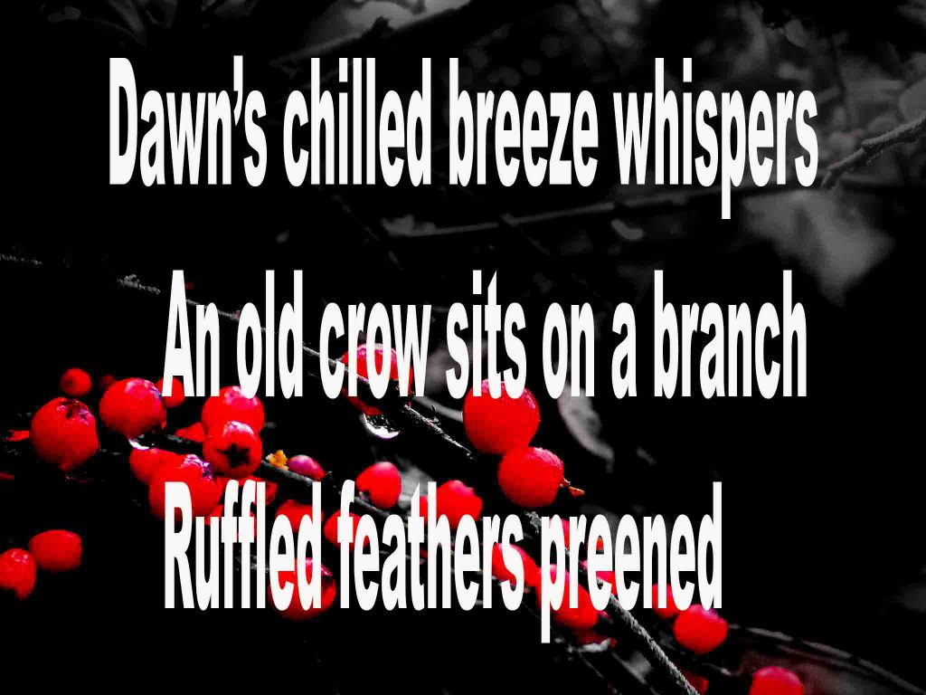 The image shows a spray of red berries on a black background on which a haiku titled Dawn's Chilled Breeze Whispers is written. The poem speaks of an old crow sitting on a branch preening its feathers..