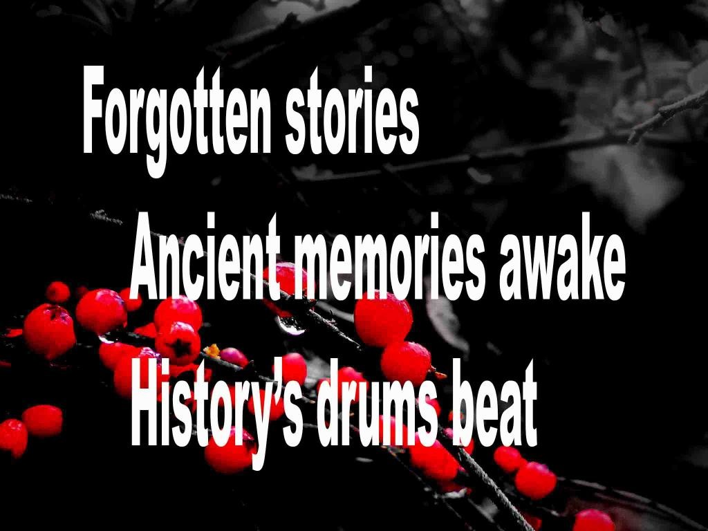 The image shows a spray of red berries on a black background on which a haiku titled Forgotten Stories is written. The poem speaks ancient memories and how history's drum beats.