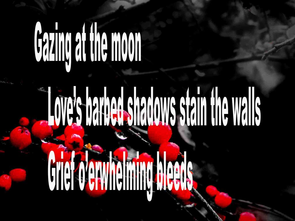 The image shows a spray of red berries on a black background on which a haiku titled Gazing at the Moon is written. The poem speaks of. looking at the moon, love's barbed shadows stain the walls and grief overwhelming bleeds.