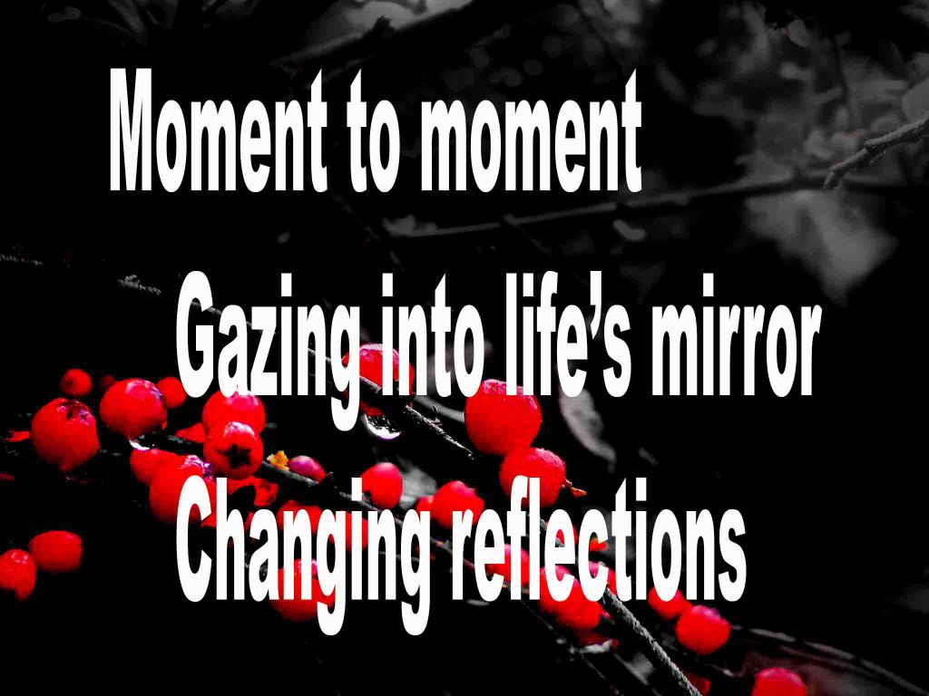 The image shows a spray of red berries on a black background on which a haiku titled Moment to Moment with Flowers is written. The poem speaks of gazing into life's mirror and how everything changes over time.
