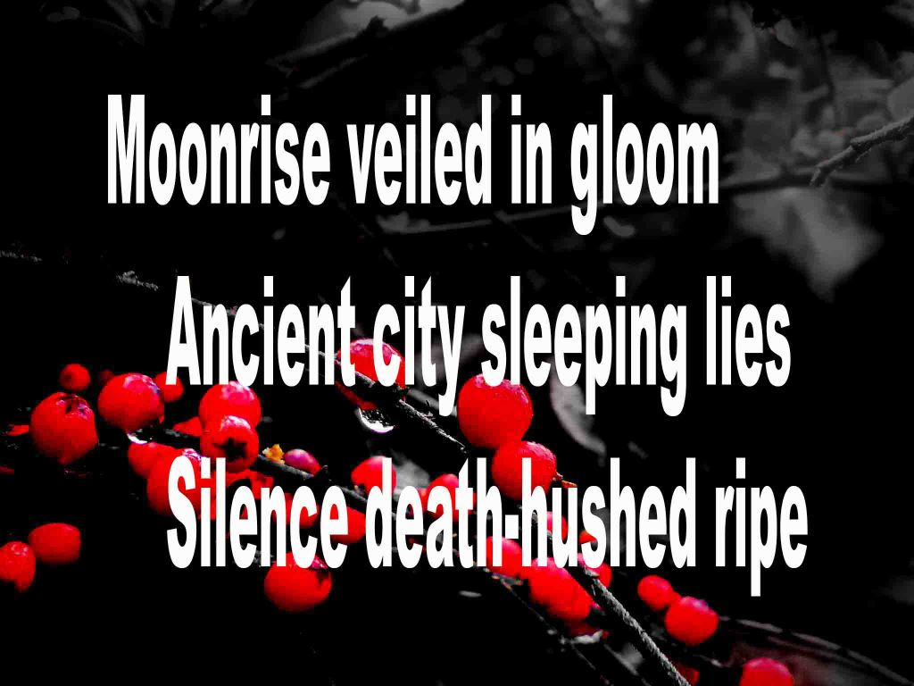 The image shows a spray of red berries on a black background on which a haiku titled Moonrise Veiled in Gloom is written. The poem speaks of flowers, bumble bees and aut night being gloom veiled, a sleeping ancient city and silence being death-hushed ripe.
