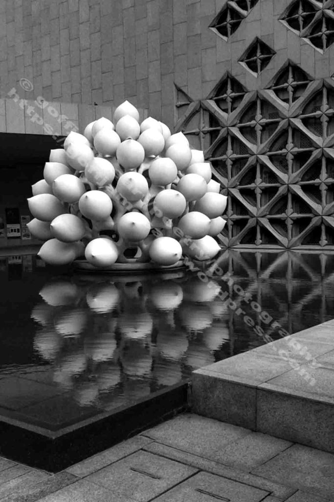 The image is a black and white photo by the photographer Goff James. The work depicts a large sculpture of lotus buds set in a large pool in front of a large star patterned building facade. The structures are reflected in the pool.
