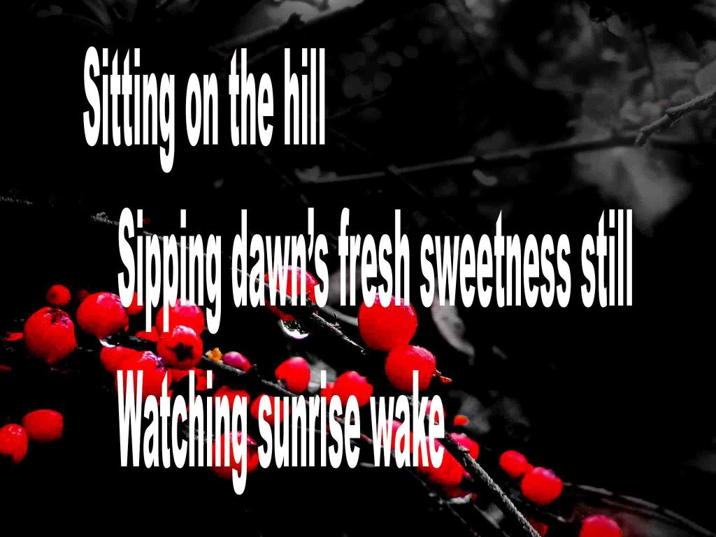 The image shows a spray of red berries on a black background on which a haiku titled Sitting on the Hill is written. The poem speaks of sitting on the hillside, sipping dawn's freshness and watching the sunrise.