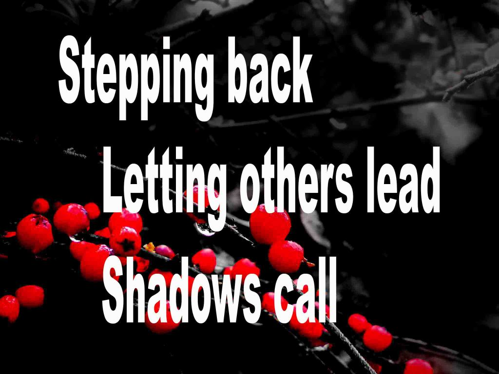 The image shows a spray of red berries on a black background on which a haiku titled Stepping Back is written. The poem speaks of letting others lead and how shadows call.