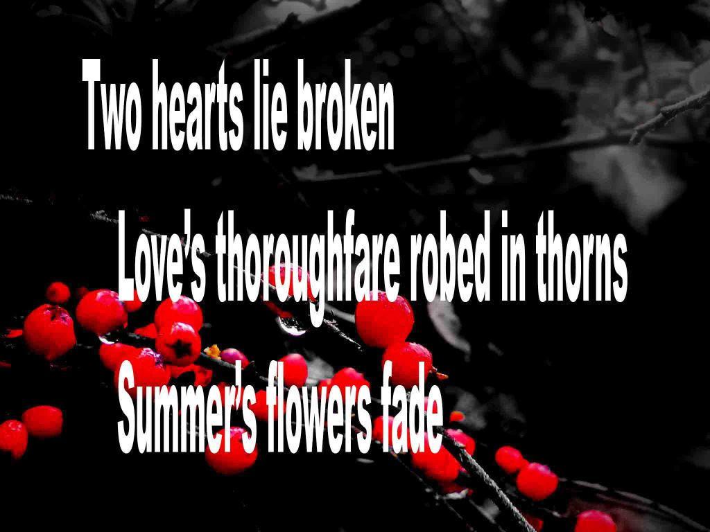 The image shows a spray of red berries on a black background on which a senryū titled Two Hearts Broken Lie is written. The poem speaks of two broken hearts , love's thoroughfare being robed in thorns and how summer's flowers fade..