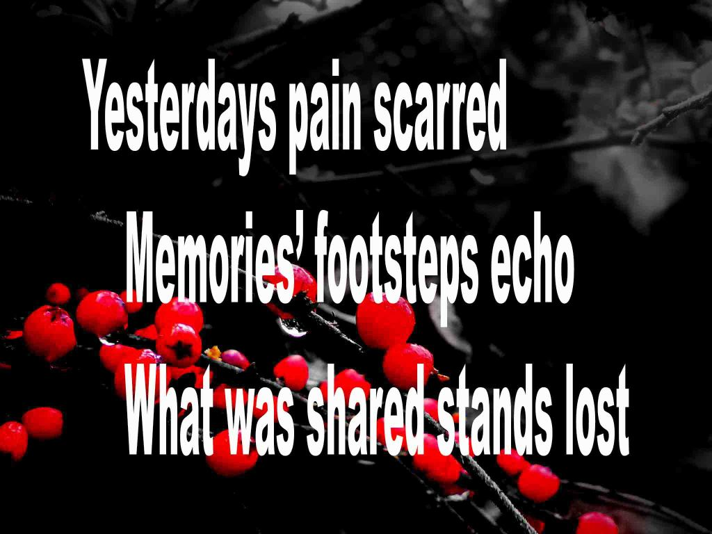 The image shows a spray of red berries on a black background on which a haiku titled Yesterday's Pain Scarred is written. The poem speaks of the pain of heartache and loss.