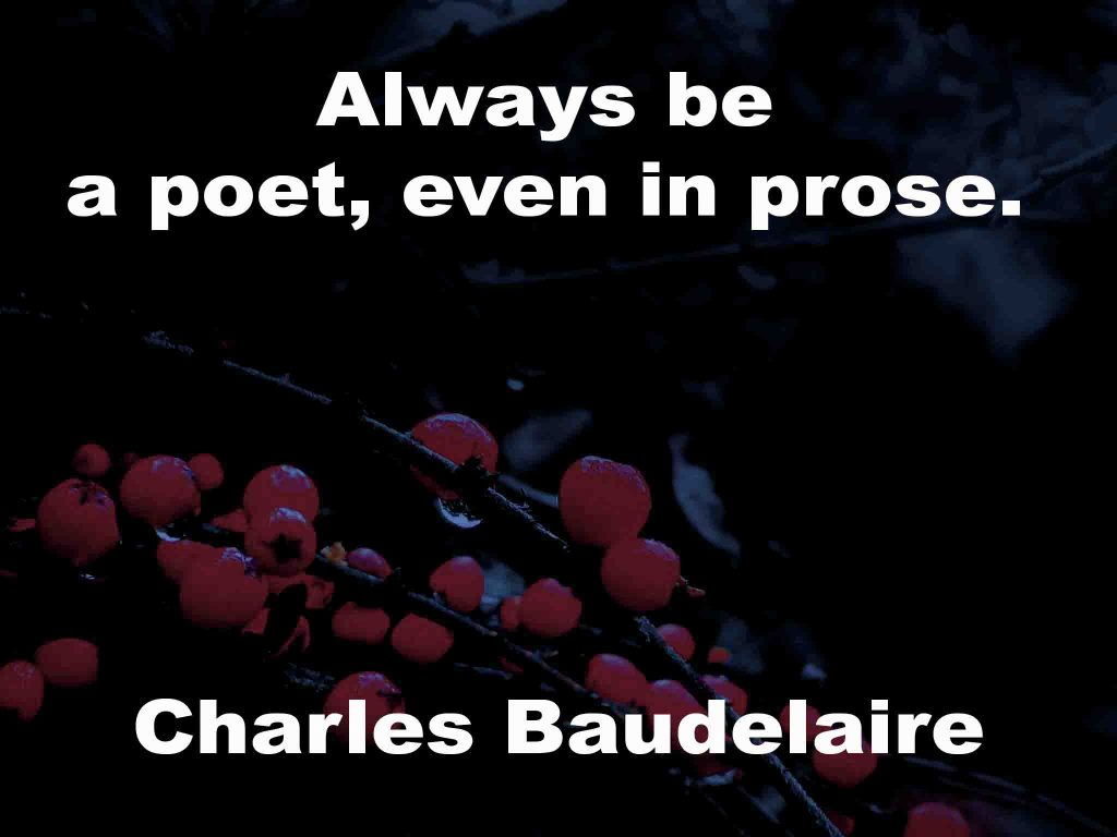 The image shows a spray of red berries on a black background on which a quotation by Charles Baudelaire is written. It speaks of always being a poet even in prose.