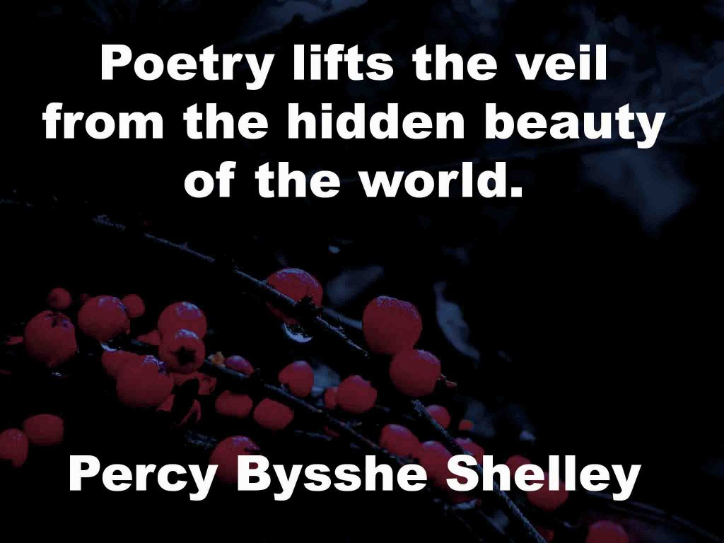 The image shows a spray of red berries on a black background on which a quotation by Percy Bysshe Shelley is written. It speaks of poetry lifting the veil from the hidden beauty of the world.