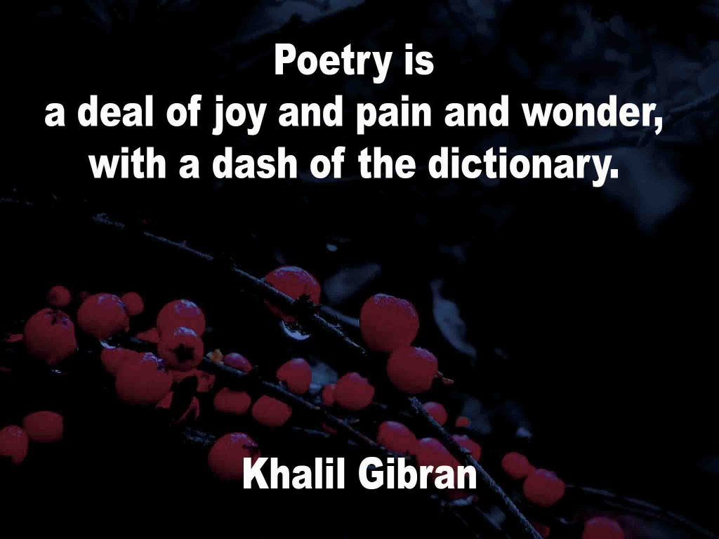The image shows a spray of red berries on a black background on which a Poetry Is quotation by Khalil Gibran is written. It speaks of poetry being a deal of joy, pain and wonder with a dash of dictionary.