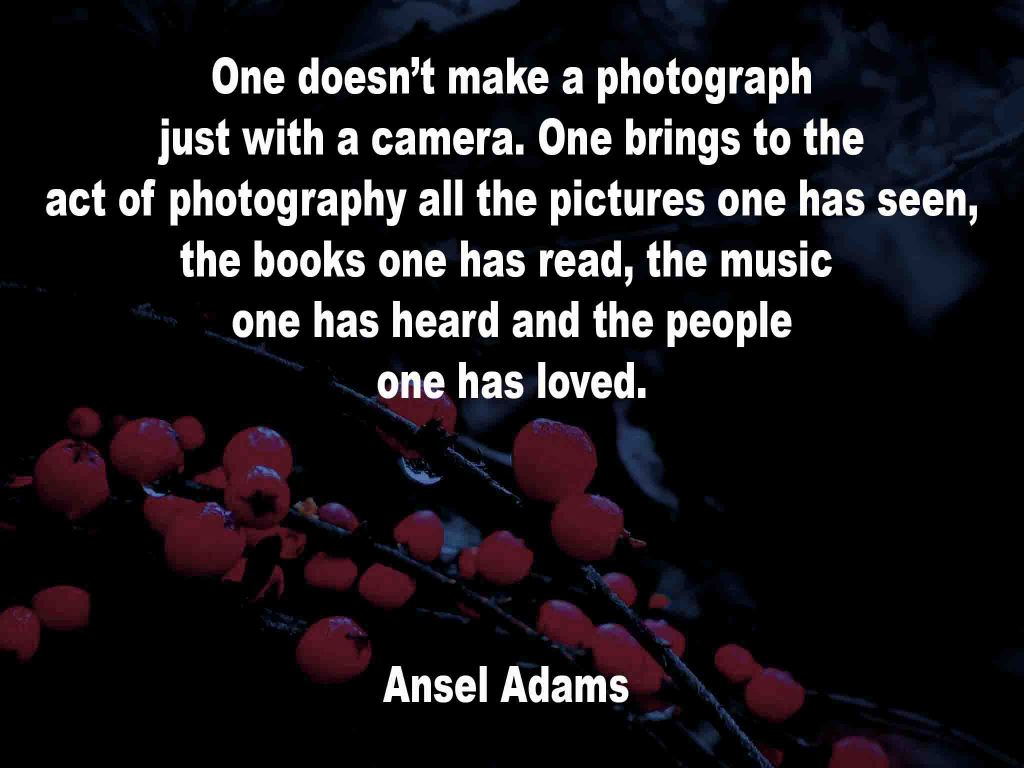The image shows a spray of red berries on a black background on which a photography quotation by Ansel Adams is written. It speaks of the matter that one make a photograph just with a camera. One brings to the act of photography all the pictures one has seen, the books one has read, the music one has heard and the people one has loved.