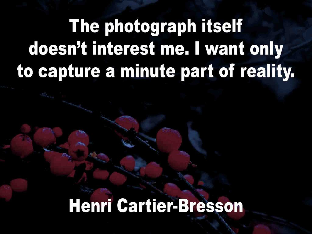 The image shows a spray of red berries on a black background on which a photography quotation by Henri Cartier-Bresson is written. It speaks of the photograph itself not interesting him. That which he wanted was to capture a minute part of reality.