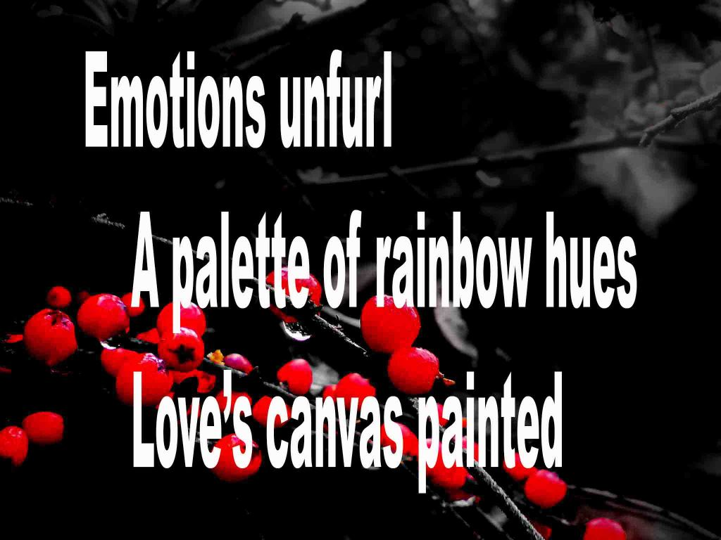 The image shows a spray of red berries on a black background on which is written a senryū poem titled Emotions Unfurl by the poet Goff James. The poem speaks of emotions unfurling and love's canvas being painted in a palette of rainbow hues.