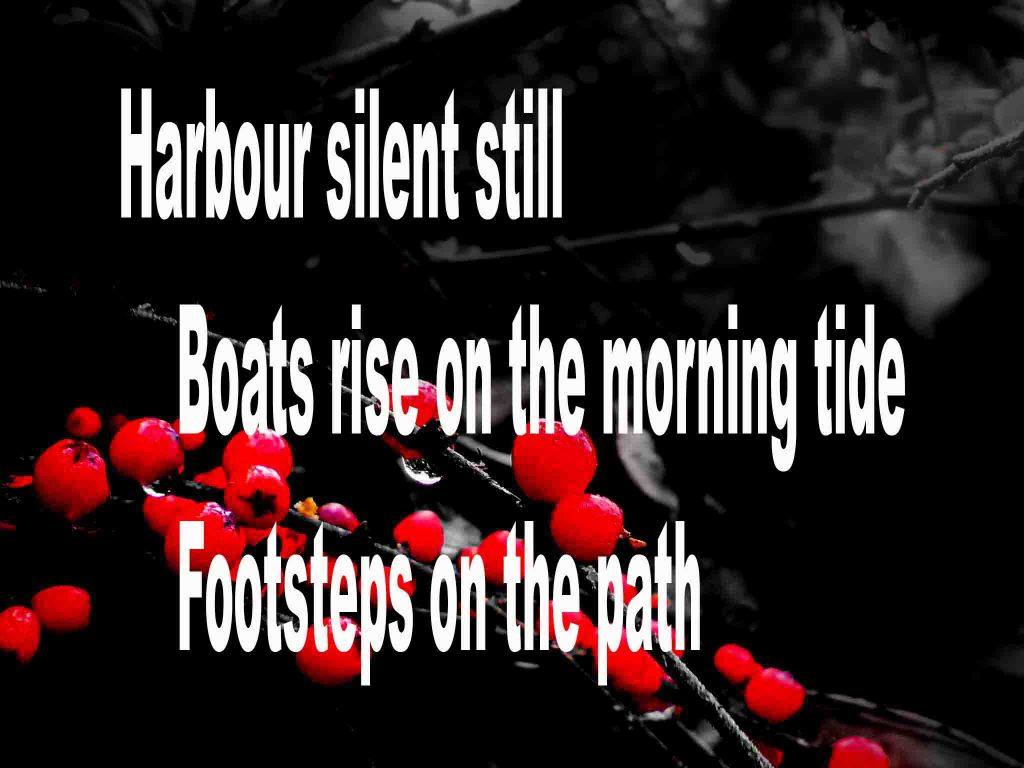 The image shows a spray of red berries on a black background on which is written a haiku poem titled Harbour Silent Still by the poet Goff James. The poem speaks of a quiet harbour, boats rising on the morning tide and footsteps on the path.