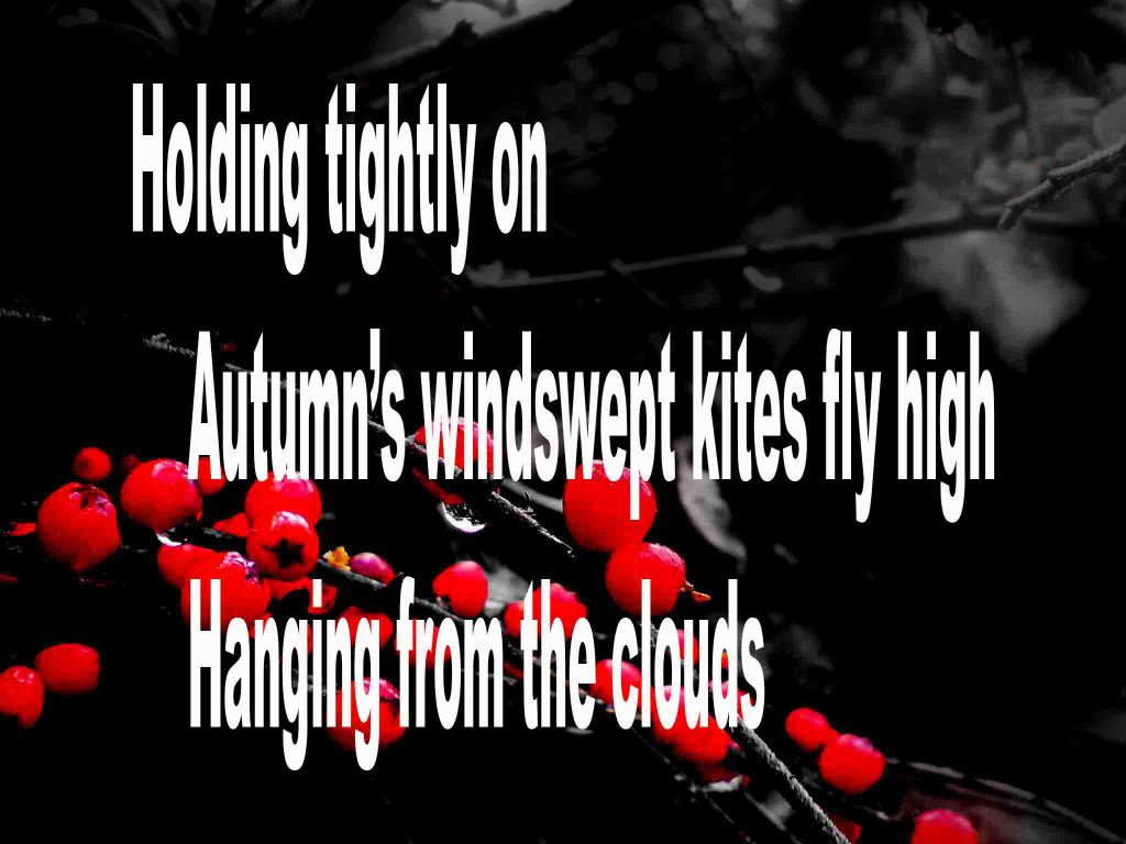 The image shows a spray of red berries on a black background on which a haiku poem titled Holding Tightly On written by the poet Goff James. The poem speaks of holding on tightly to a kite that has been swept high by autumn's wind and appears to hang from the clouds.