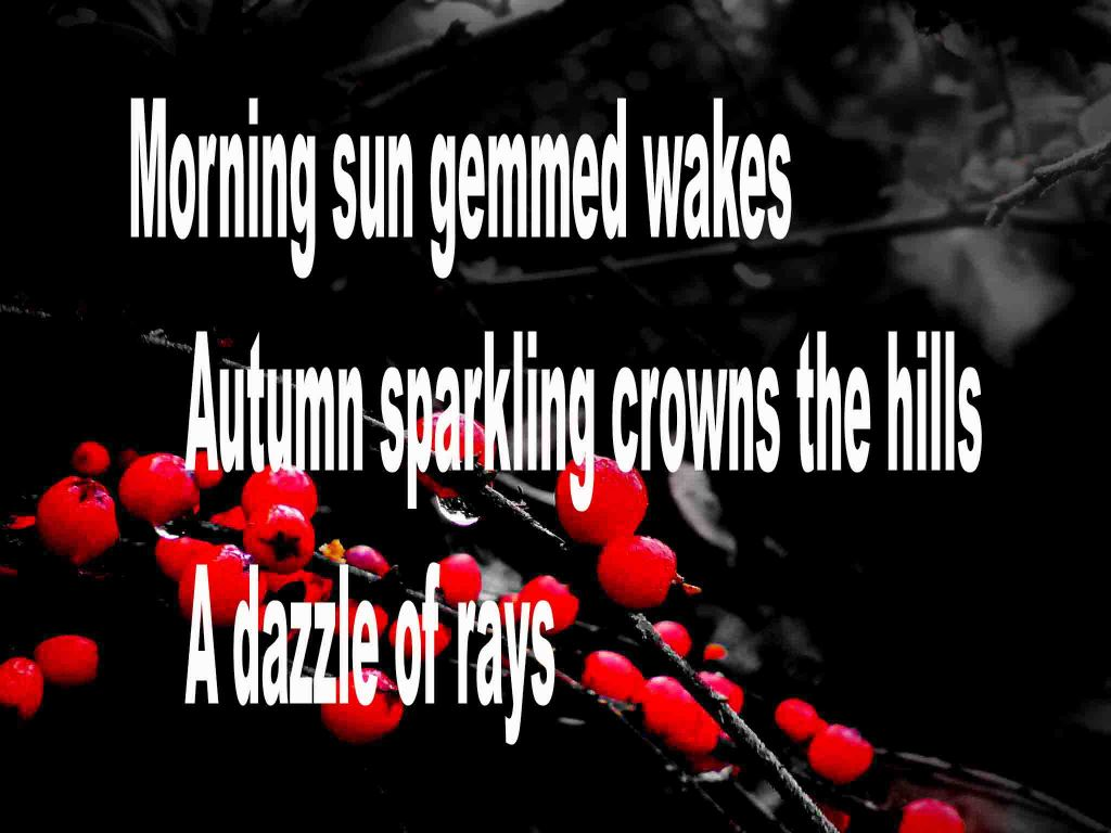 The image shows a spray of red berries on a black background on which is written a haiku poem titled Morning Sun Gemmed Wakes by the poet Goff James. The poem speaks of morning waking and being gemmed in sunlight, autumn sparkling crowing the hills and a dzzle of rays.