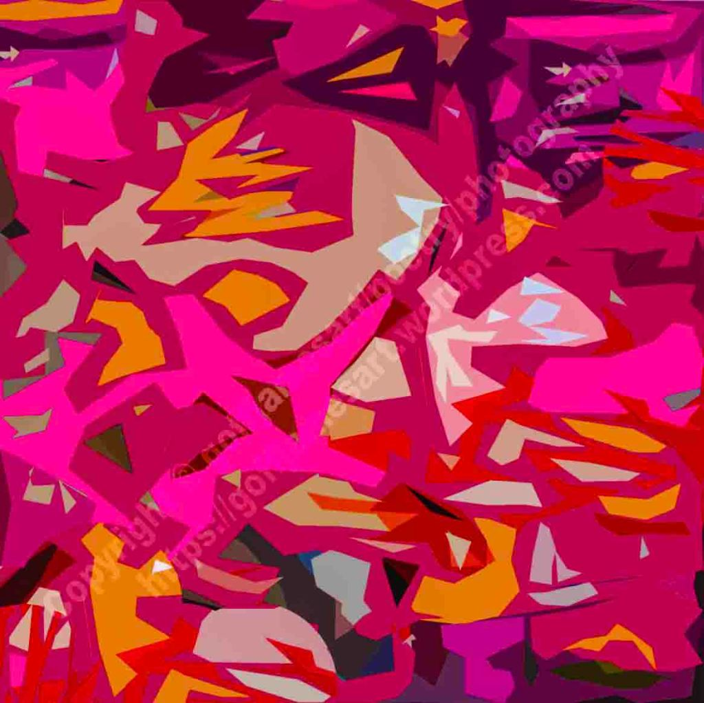 The image depicts an abstract painting titled Graffiti I  by the artist Goff James. The work is a vibrant coloured painting of a variety fragmented shapes on a dark maroon background.