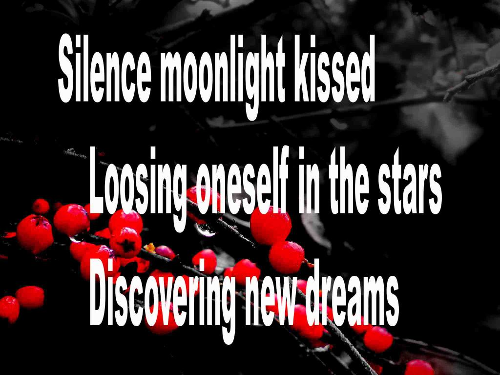 The image shows a spray of red berries on a black background on which is written a senryū poem titled Silence Moonlight Kissed by the poet Goff James. The poem speaks of silence being moonlight kissed, loosing oneself in the stars and discovering new dreams.