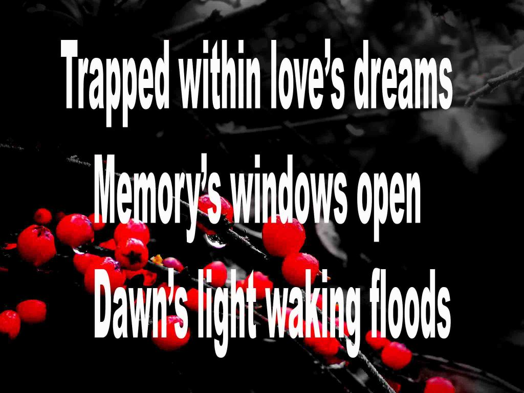 The image shows a spray of red berries on a black background on which is written a senryū poem titled Trapped Within Love's Dreams by the poet Goff James. The poem speaks of being trapped within love's dreams, memory's windows open and dawn's light waking floods in.