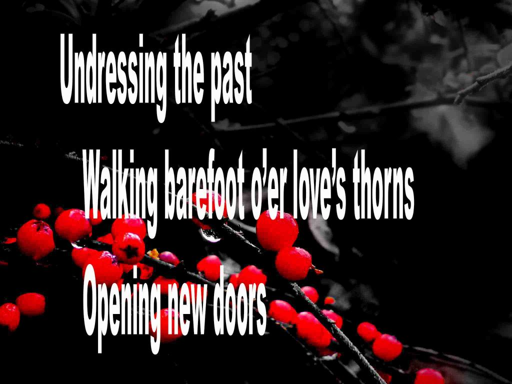 The image shows a spray of red berries on a black background on which is written a senryū poem titled Undressing the Past by the poet Goff James. The poem speaks of undressing the past, walking barefoot over love's thorns and opening new doors.