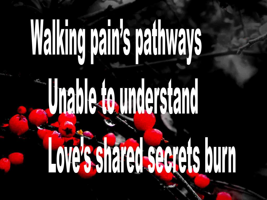 The image shows a spray of red berries on a black background on which is written a senryū haiku poem titled  Walking Pain's pathways by the poet Goff James. The poem speaks of walking pain's pathways, unable to understand and love's shared secrets burning.