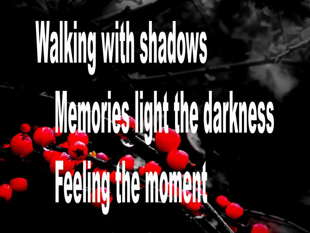 The image shows a spray of red berries on a black background on which is written a senryū poem titled Walking with Shadows by the poet Goff James. The poem speaks of walking with shadows, memories light the darkness and feeling the moment.